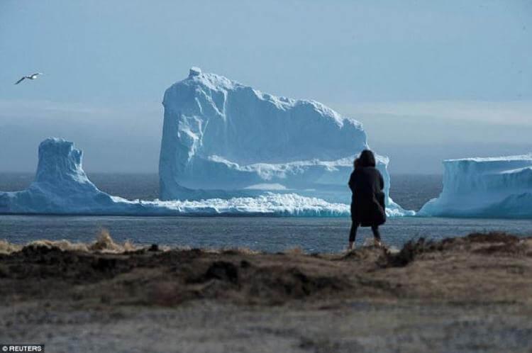 В Канаде небывалый ажиотаж: к берегу приплыл айсберг колоссальных размеров! Смотрите его разрушение!