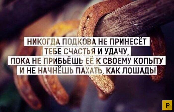 Мудрые жизненные фразы, наполненные правдой