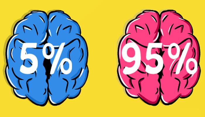 Шесть задач для проверки мозга
