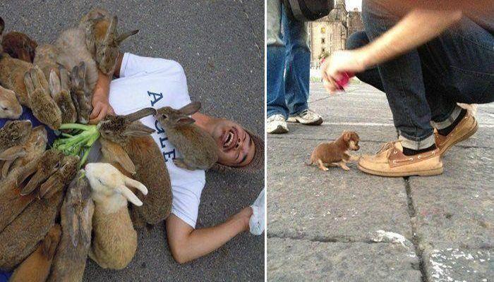 """15 самых """"свирепых и жестоких"""" нападений зверей на человека"""