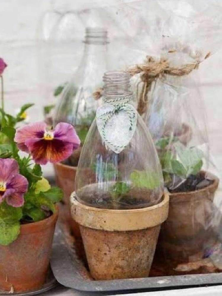 15+ советов по использованию старых пластиковых бутылок